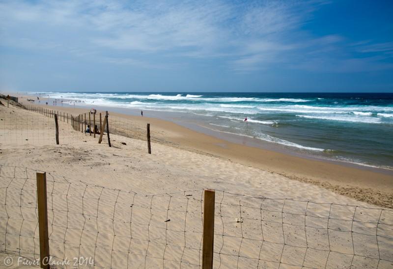 Paysage de bord de mer Biscarosse. P7050014