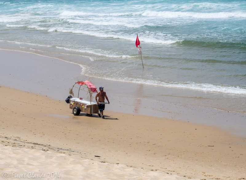 Paysage de bord de mer Biscarosse. P7050015