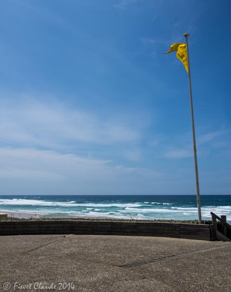 Paysage de bord de mer Biscarosse. P7050019