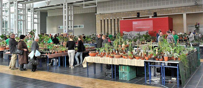 Expo Gardenia : Les journées florales en picardie (60) Beauva10