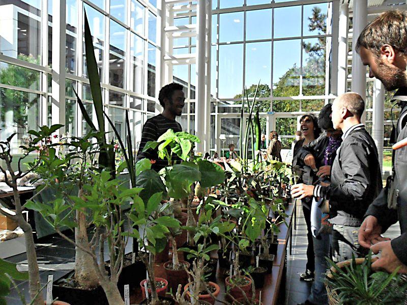 Expo Gardenia : Les journées florales en picardie (60) Beauva16