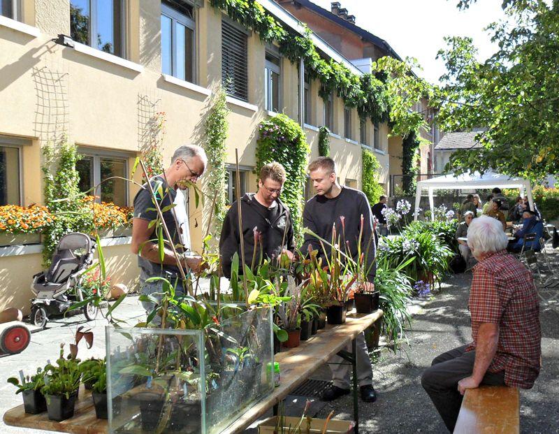 Bourse aux plantes carnivores et atypique 2014- Jardin botanique de Fribourg - Page 2 Fribou15