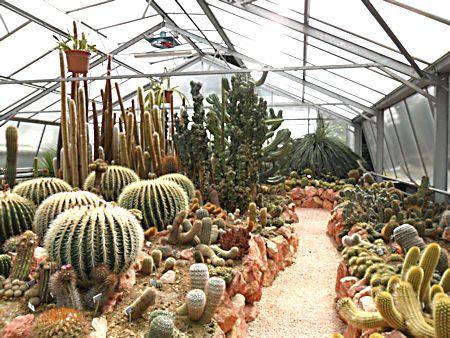 Jardin botanique de Porrentruy (JU) Jb_por35