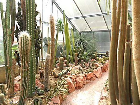 Jardin botanique de Porrentruy (JU) Jb_por36
