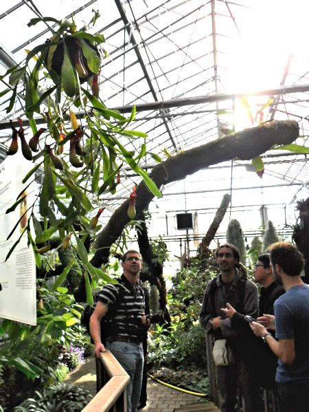 Jardin botanique de Tourcoing (59) Jb_tou22