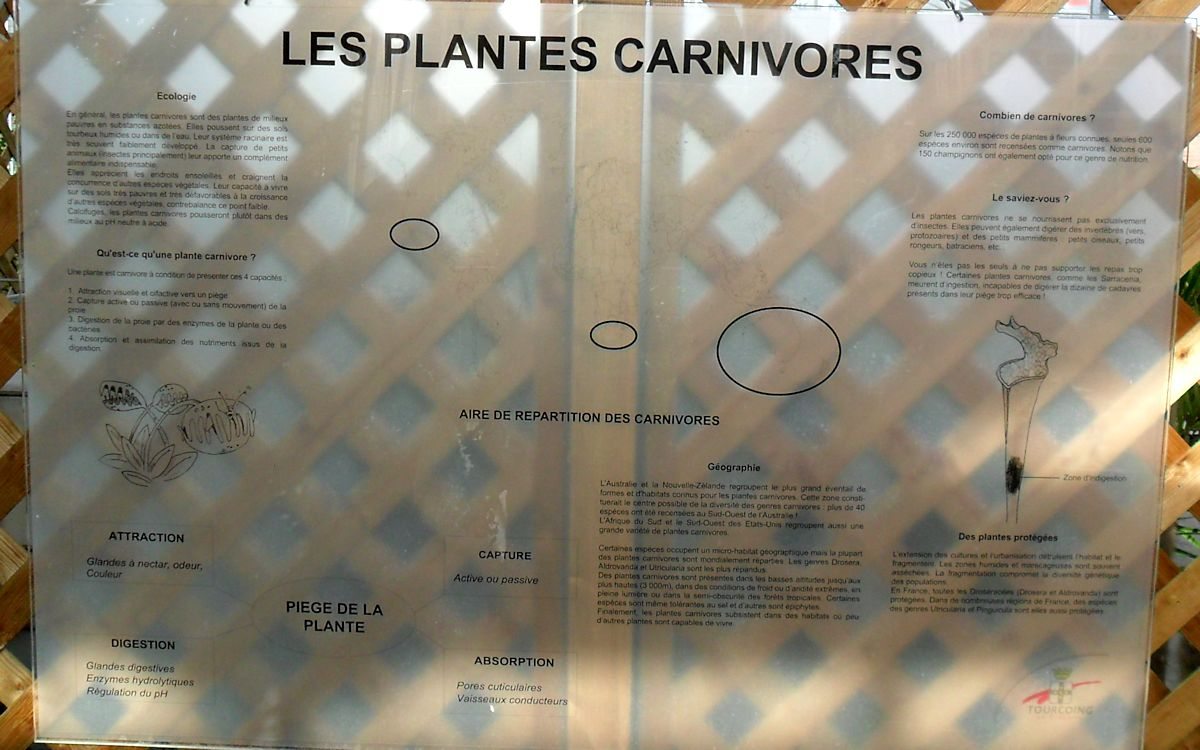Jardin botanique de Tourcoing (59) Jb_tou28