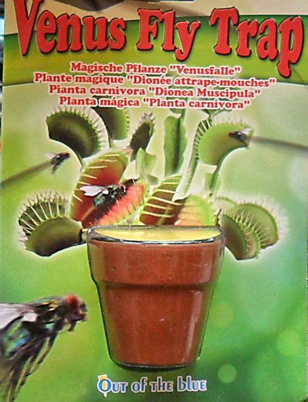 Pot Flytrap vu au marché aux fleurs à Paris Pot_fl11