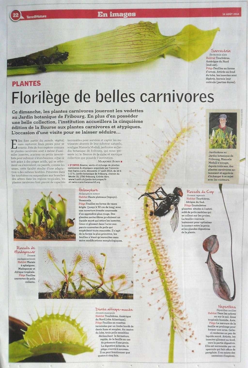 Bourse aux plantes carnivores et atypique 2014- Jardin botanique de Fribourg - Page 2 Terre_11