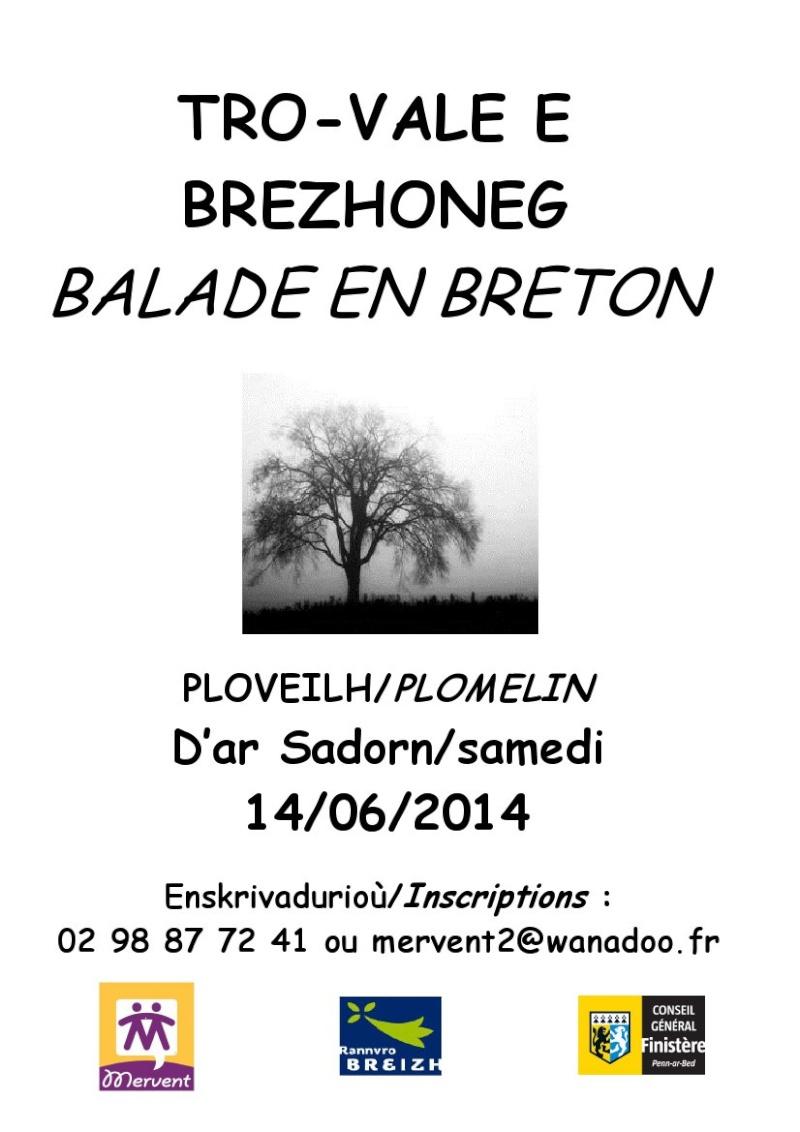 Tro-Vale e Brezhoneg 14/06/2014 Skrite10
