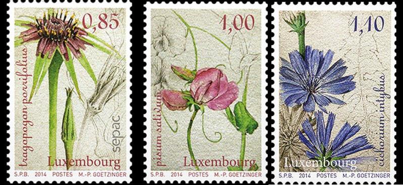 Luxemburg 2014 01260