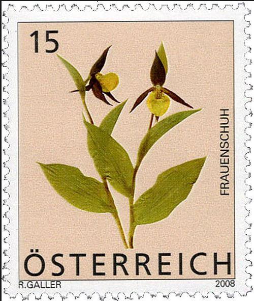 Heimische Blumen 0133