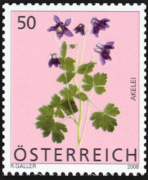 Heimische Blumen 0134