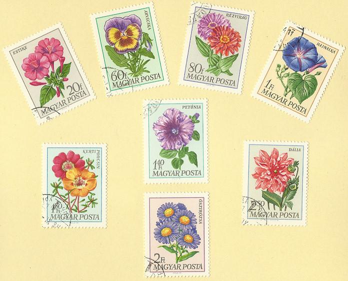 Gartenblumen Blumen10