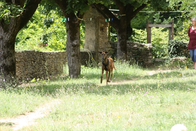 Un Dimanche en Provence chez Loupia Img_6816