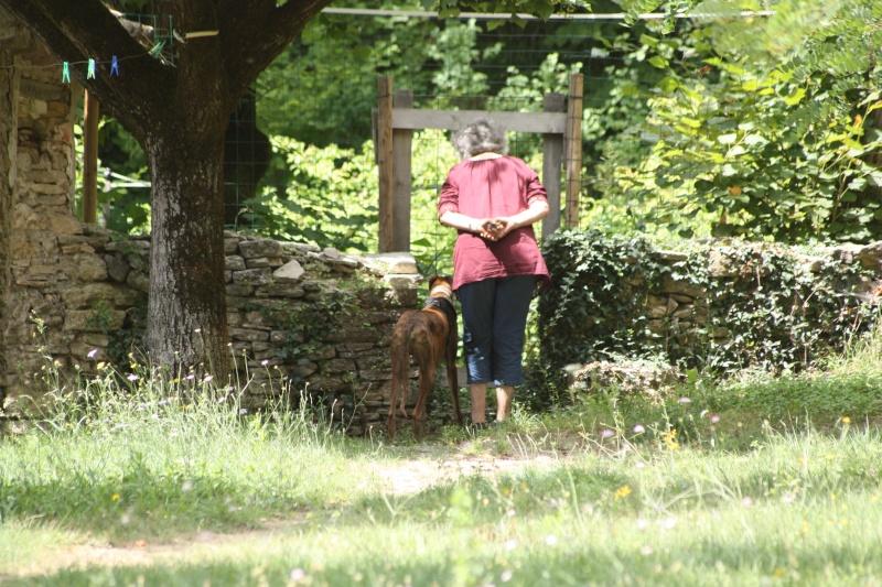 Un Dimanche en Provence chez Loupia - Page 2 Img_6825