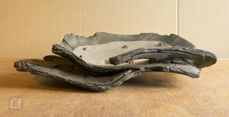 my new work - atelier bonsai Element - Page 9 Bonsai12