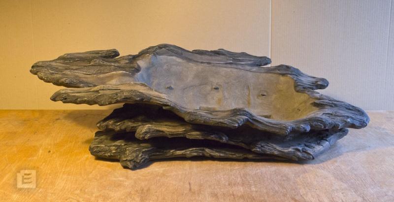 my new work - atelier bonsai Element - Page 9 Bonsai13