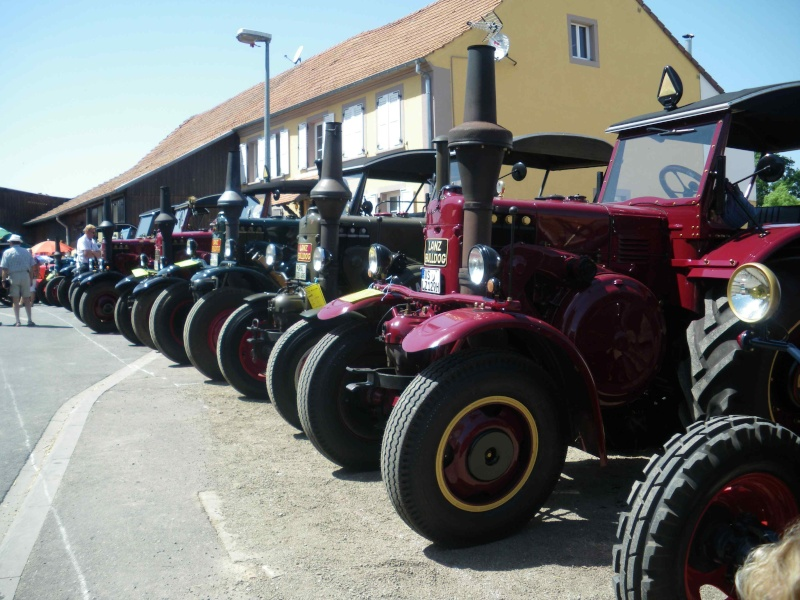 quelques vieux tracteurs LANZ BULLDOG lors d'une brocante à Zilling 2014-024