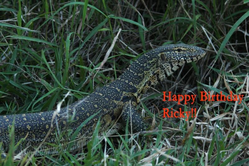 HAPPY BIRTHDAY THREAD - Page 2 Img_5910