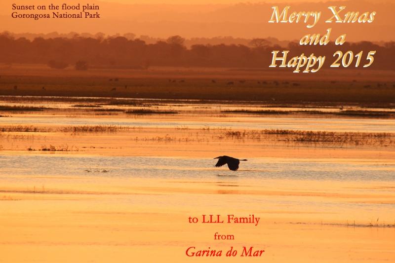 Christmas Greetings Natal_10
