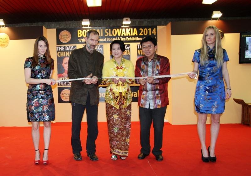 Bonsai Slovakia Openin10