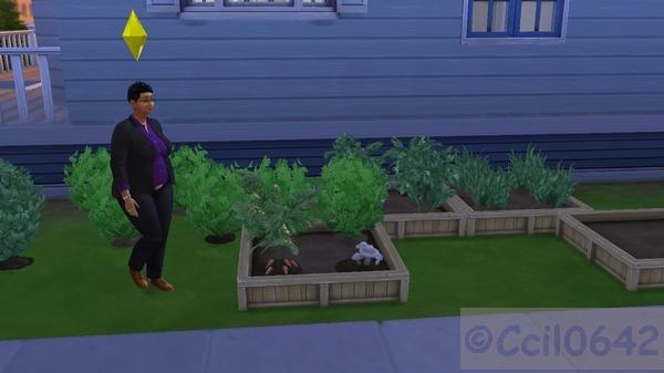 [Sims 4] Un souvenir de vos premiers instants de jeu Forum_10