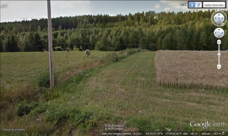 Diagonale européenne de Grense Jakobselv (NORVEGE) au Cap de Gate (ESPAGNE) - Page 2 900_km10