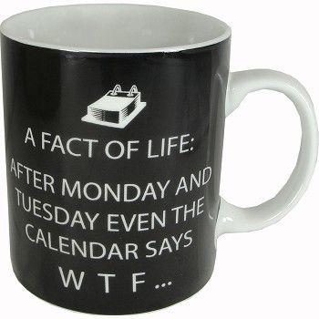 Fact of Life Att00025