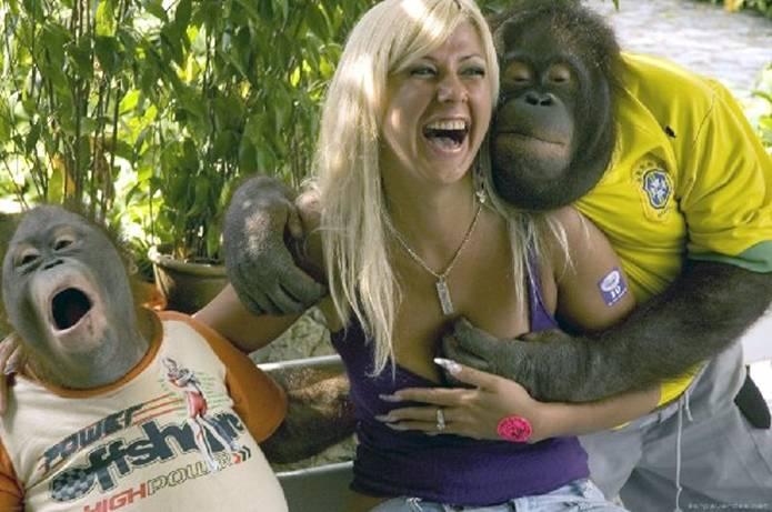 Love the look on the Orangutan's face!!! Mime-a29