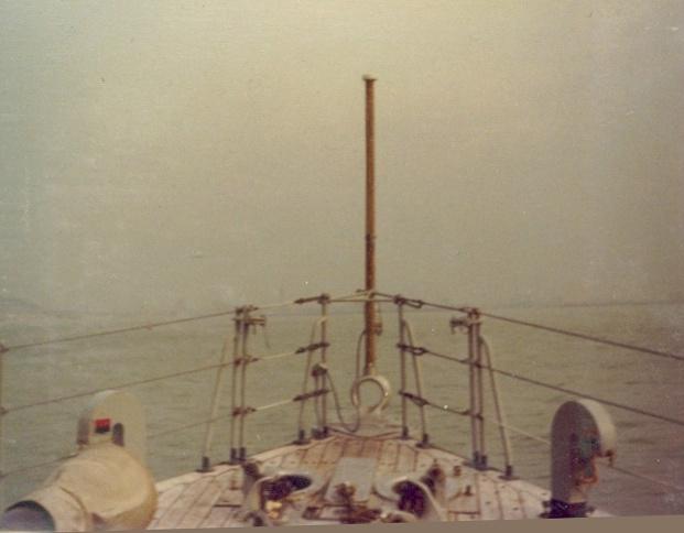 VEGA (DM) 1811