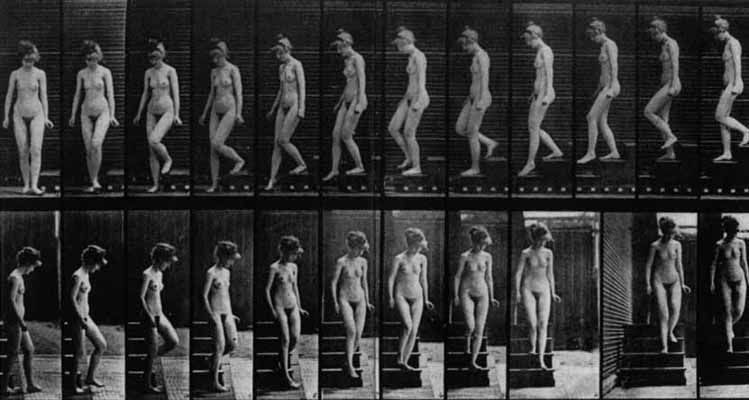 Robert Schwarz  : nu, visitant une exposition  Chrono11