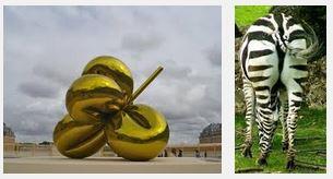 Juxtapositions oulipiennes d'images - Poésie des contrastes Fesses10