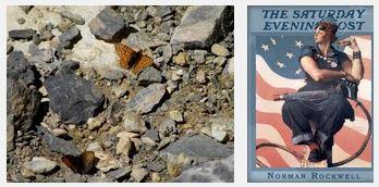 Juxtapositions oulipiennes d'images - Poésie des contrastes J_ai_t10