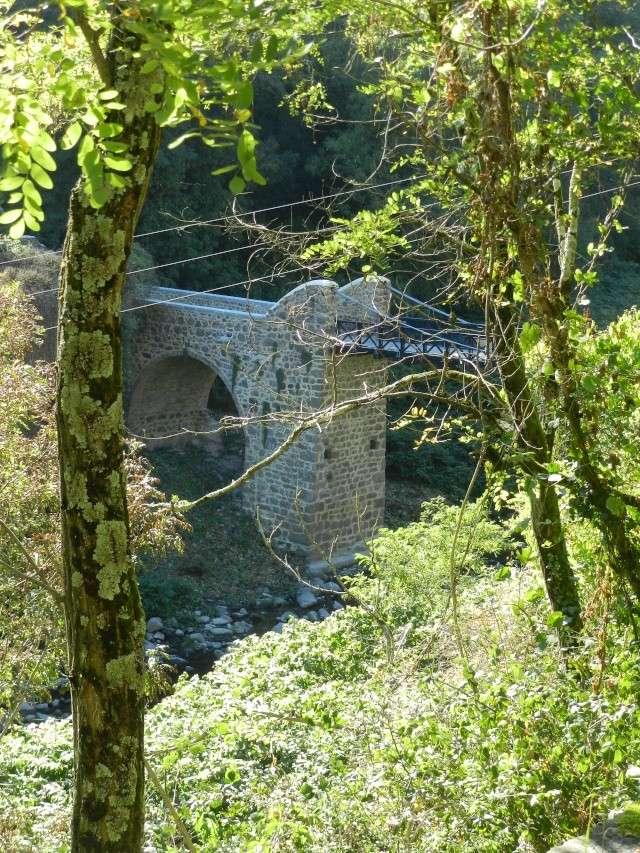 un des premiers ponts suspendus Marc Seguin Marcla11