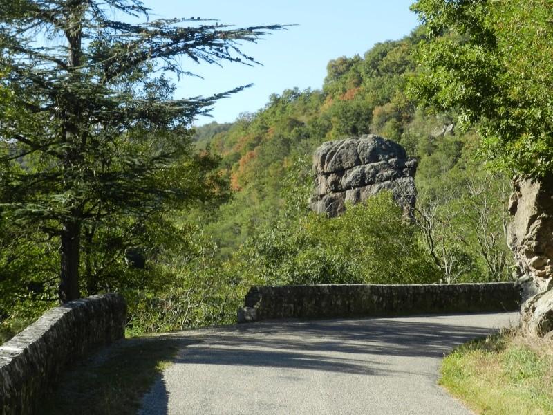 un des premiers ponts suspendus Marc Seguin Marcla14
