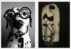 Juxtapositions oulipiennes d'images - Poésie des contrastes Mon_oe11