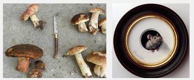 Juxtapositions oulipiennes d'images - Poésie des contrastes Rat10
