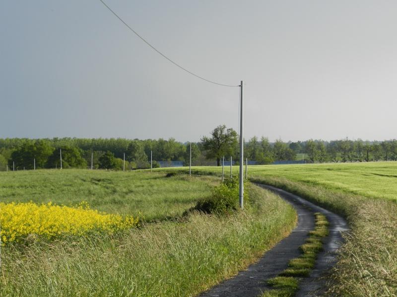 Petits viaducs de la LGV en Mayenne Vauvar26