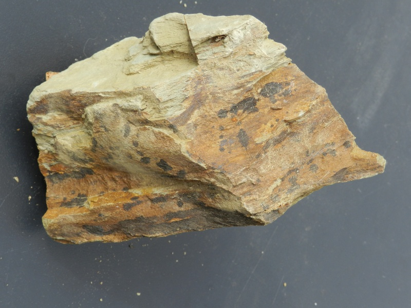 Pierres ramassées lors d'une excavation de la LGV en Mayenne Vauvyr41