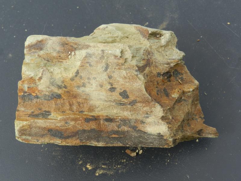 Pierres ramassées lors d'une excavation de la LGV en Mayenne Vauvyr42