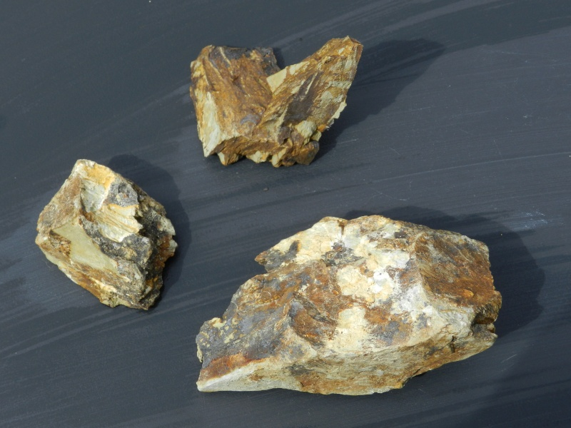 Pierres ramassées lors d'une excavation de la LGV en Mayenne Vauvyr62