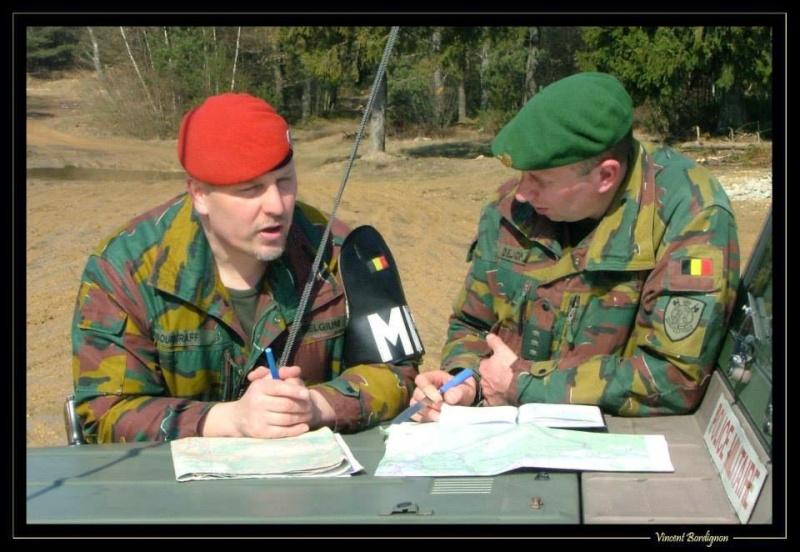 Belgian Army Insignia 13788110