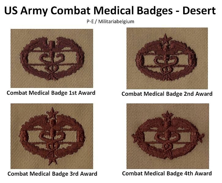 Qualification Badges of US Army Uniforms 726px-10