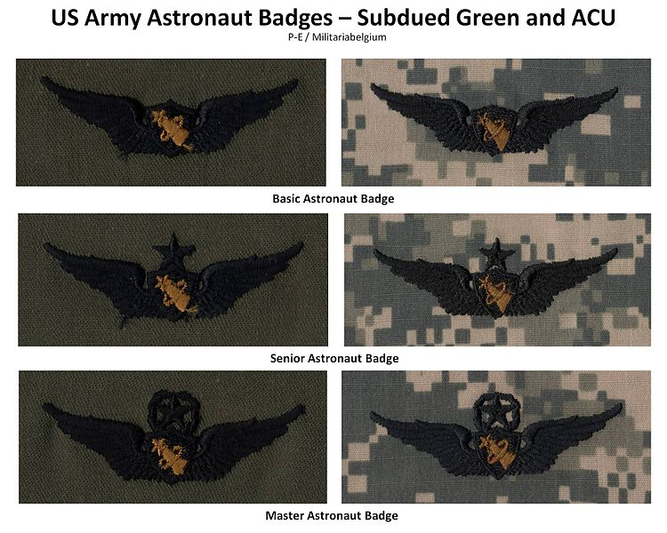 Qualification Badges of US Army Uniforms 750px-11
