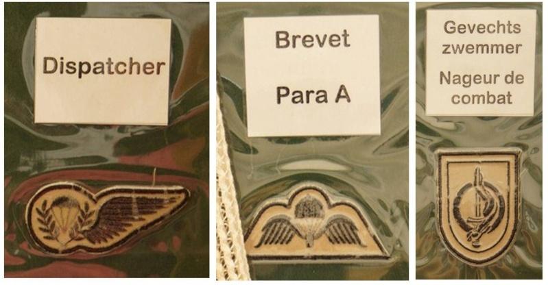 Belgium army qualification badges Diapos21