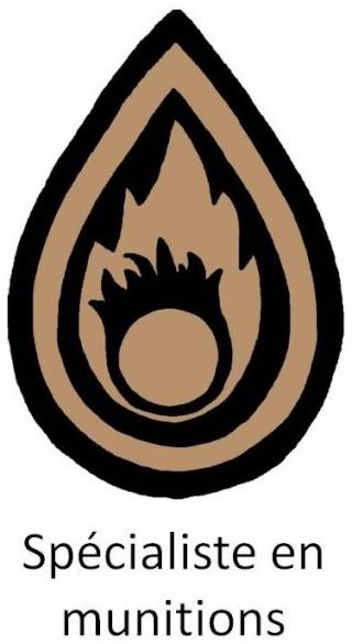 Belgium army qualification badges Diapos22