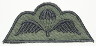 Belgium army qualification badges Dsc01018