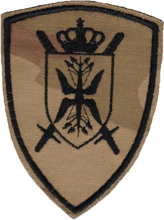 Belgian Army Insignia Patche11