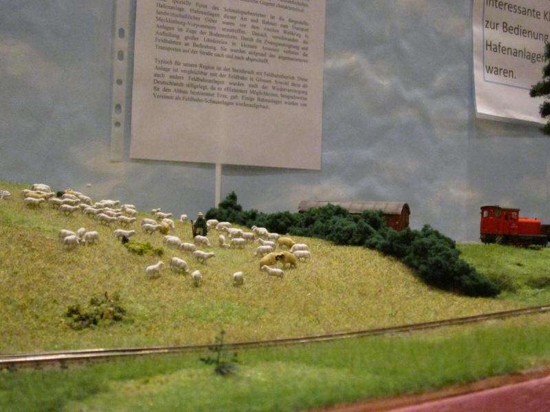 Modellbahn-Ausstellung in Kreischa 2012 Img_0522