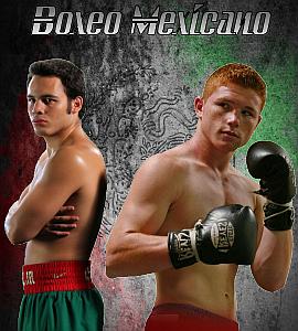 PaneldeBoxeo.com - Lo Mejor del Boxeo en Español - Portal Inicial Portal20
